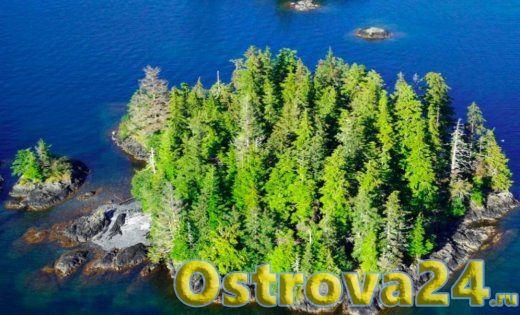 Остров Алеуткина