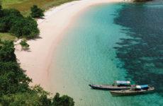 Остров драконов Индонезии — удивительный остров Комодо